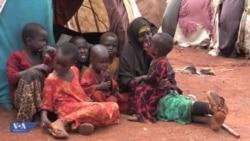 Mkimbizi arudi Dadaab miaka miwili baada ya kuondoka