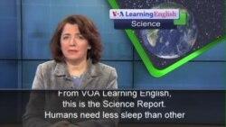 Humans Sleep Less, Better Than Other Mammals
