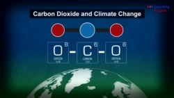 Explainer: CarbonDioxide and Climate Change