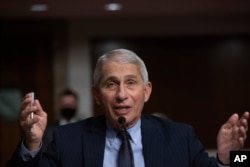 Dr. Anthony Fauci, Director of the National Institute of Allergy and Infectious Diseases at the National Institutes of Health, listens during a Senate hearing, Sept. 23, 2020, in Washington.