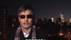 陳光誠發表世界人權日視頻講話