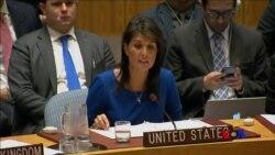 美英法聯手打擊敘利亞化武 中俄聯手推聯合國決議未得手 (粵語)