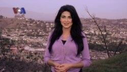 کہانی پاکستانی: کیلی فارنیا میں پاکستانی امیریکن قلم کار