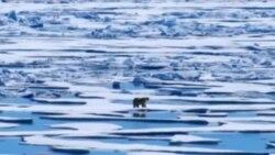 Led se i nadalje topi na Arktiku