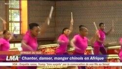 Une académie d'arts chinois en Afrique du Sud