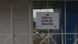 WHO: Number of New Ebola Cases in West Africa Leveling Off
