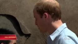 Hoàng tử William tới Việt Nam để làm gì?