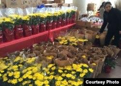 Hoa Tết tại trung tâm thương mại Grand Century ở San Jose (ảnh Bùi Văn Phú)