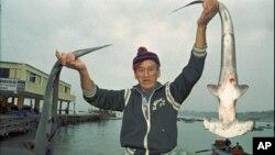 Perú planea adelantar a octubre su temporada principal de pesca para asegurar que la captura de anchoveta no se vea afectada con el fenómeno de El NIño.