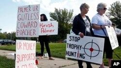 Para pemrotes melakukan unjuk rasa di luar kantor Walter Palmer, seorang Dokter gigi Amerika yang membunuh singa Cecil di kota Bloomington, Minnesota, Selasa (8/9).
