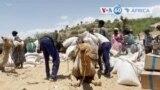 Manchetes Africanas 11 Junho 2021: ONU preocupada com situação humanitária em Tigray
