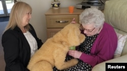 The Tombot is similar to other robot dogs meant for patients with dementia. Care home manager Deanna Barnes introduces Katrina Brooke, aged 73, to Biscuit the robotic dog at Templeman House Residential and Dementia Care Home in Bournemouth, Britain, April 5, 2018.