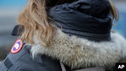 In this Feb. 14, 2019 photo, a woman in New York wears a Canada Goose coat with a hood fur trimmed with coyote fur. (AP Photo/Frank Franklin II)
