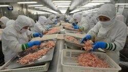 [주간 RFA 소식 오디오] 미국, 북한 노동자가 생산한 중국산 수산물 차단