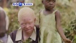 Manchetes Africanas 8 Junho 2016