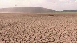 """지구 온난화 가속화...""""국제적 대응 노력 시급"""""""