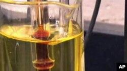 美国玉米大约40%被用于生产乙醇
