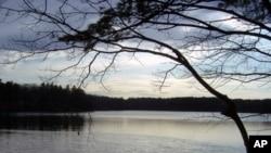 梭罗在沃尔登湖畔的公民抗命经历影响后世