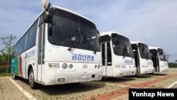 금강산 관광 중단 5년을 이틀 앞둔 9일, 한국 강원 고성군 현내면 화진포아산휴게소 주차장에 운행을 멈춘 관광버스 4대가 주차돼 있다.