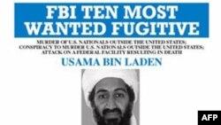 «Аль-Кайда» на Кавказе: что было при бин Ладене