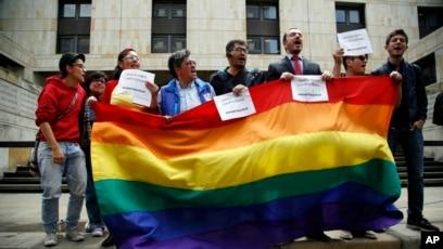 adopcion gay en colombia corte constitucional