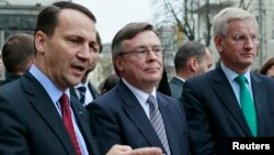 Ukraine's FM Leonid Kozhara (C), Poland's FM Radoslaw Sikorski (L) and Sweden's FM Carl Bildt following a meeting with Ukraine's President Viktor Yanukovych in Kyiv, October 22, 2013.