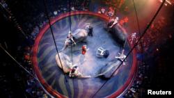 John Vernuccio dari Italia dan gajahnya tampil selama pertunjukan 'Sejarah' di Arlette Gruss Circus di Bordeaux, Perancis, 4 Februari 2014. (Foto: Reuters/Regis Duvignau)
