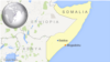 알샤바브, 소말리아 남서부 마을 공격…12명 사망