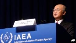 Tổng giám đốc Cơ quan Nguyên tử năng Quốc tế, đề nghị Việt Nam không nên vội vã xây nhà máy điện hạt nhân
