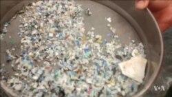 Plastic Contaminants Discovered in Deep Ocean