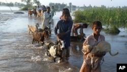 巴基斯坦災民撤離家園