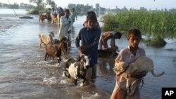 Poplave u Pakistanu, 9. septembar 2014.