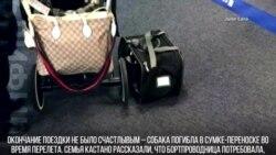 Собака в багаже