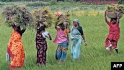 Kadın Çiftçilere Destek Çağrısı