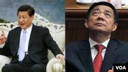 习近平(左)与薄熙来