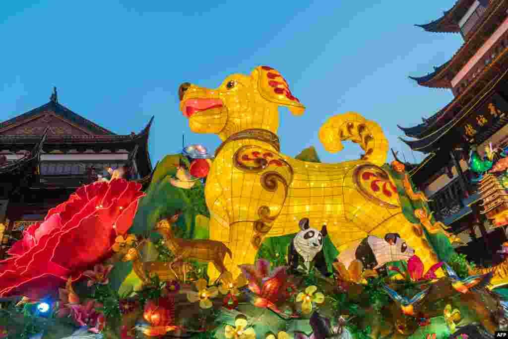 نمایی از اشکال مختلف از فانوس های نصب شده در باغ یو شانگهای چین به مناسبت فرا رسیدن سال نو چینی یا فستیوال بهار در آن کشور