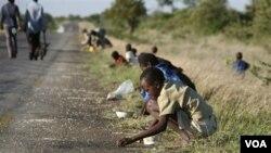 Anak-anak dan orang tua sedang memungut jagung yang jatuh di jalanan dari sebuah truk di Zimbabwe (foto: dokumentasi)