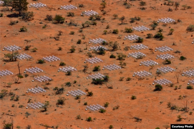 Aerial view of the Murchison Widefield Array (MWA) radio telescope in Western Australia's outback (Murchison Widefield Array)