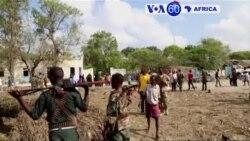 Manchetes Africanas 12 Dezembro 2016: al-Shababa volta a atacar na Somália