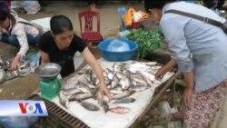 Chợ quê miền Trung Du