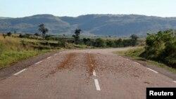 Vue de la région de Menabe, dans l'ouest de Madagascar, le 29 mars 2013.