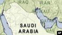 سعودی عرب نے 113 جنگ جو گرفتار کر لیے