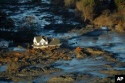 2008年一座发电厂的粉煤灰池溃堤,有毒煤灰流入埃默里河