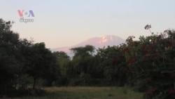 តង់សានីគ្រោងនឹងបើកកន្លែងជិះរថយន្តខ្សែកាបលើភ្នំ Kilimanjaro