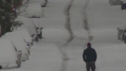 Snežna oluja paralisala Vašington