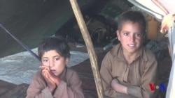 Xalqaro hayot - 14-sentabr, 2018-yil - Qurg'oqchilik Afg'onistonni qaqshatmoqda