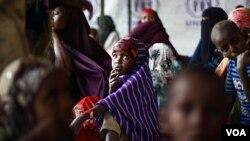 De acuerdo con Naciones Unidas, más de 12 millones de personas en el Cuerno Africano estarían necesitadas con urgencia de alimentos.