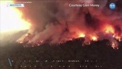 Avustralya'da Yangında Mahsur Kalanlar Kurtarılmayı Bekliyor