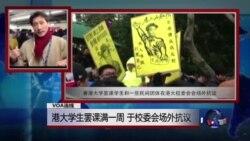 VOA连线:港大学生罢课满一周 于校委会场外抗议