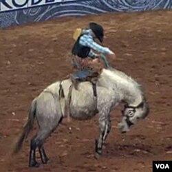 Godišnji rodeo u Houstonu, Texas